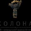 Логотип сайту kolona.net