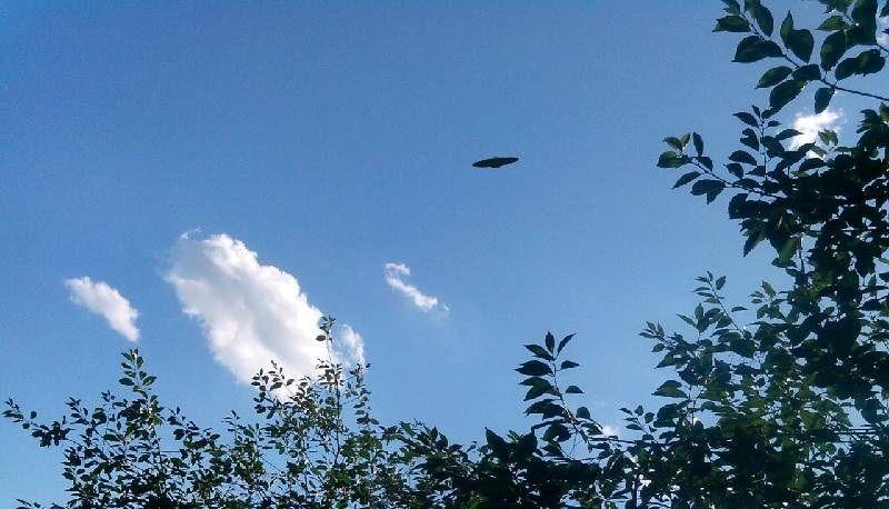 Двоє жителів Рівненщини бачили НЛО