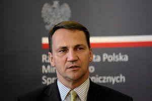 Сікорський: Україна може отримати безвізовий режим з ЄС вже в 2015 році ( + ВІДЕО )