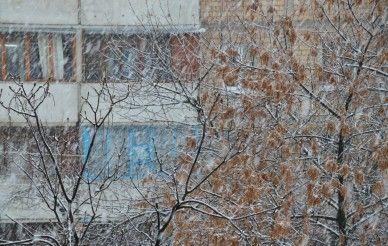 In Rivne snow again