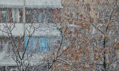 snow, На Ровенщине снова выпал снег