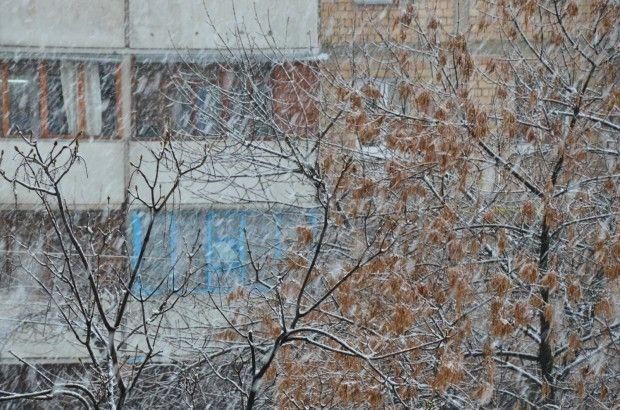 На Рівненщині знову випав сніг