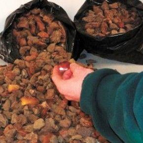 На Рівненщині вилучили 300 кілограм бурштину