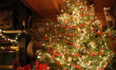 різдвяні свята