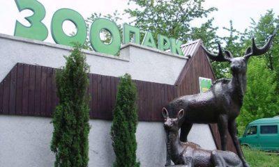 Рівненському зоопарку виділили понад мільйон гривень