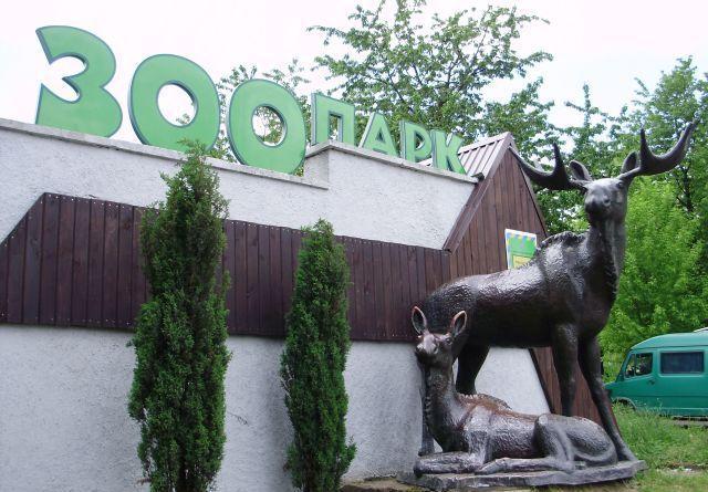 Рівненському зоопарку виділять понад мільйон гривень