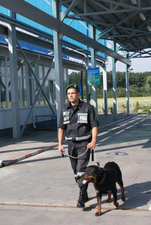 Буковинські прикордонники затримали молдаванина з пістолетом