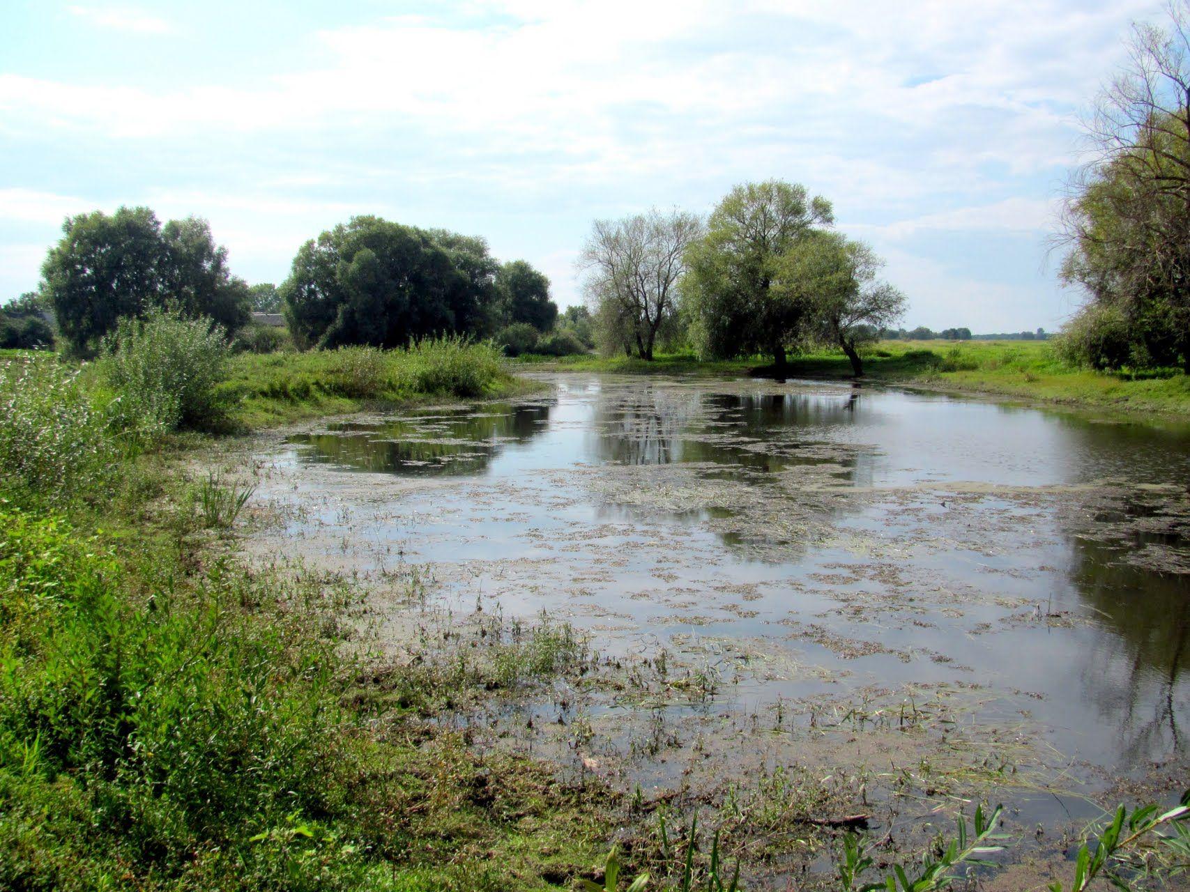 У Луцьку збирають петицію за очищення річки