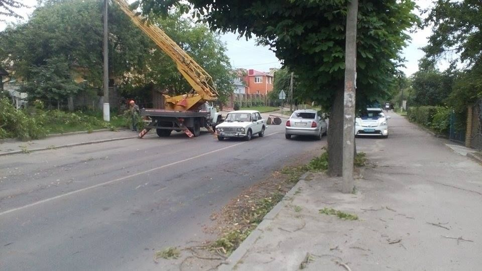 В Рівному через обрив електролінії постраждало авто (Фото)