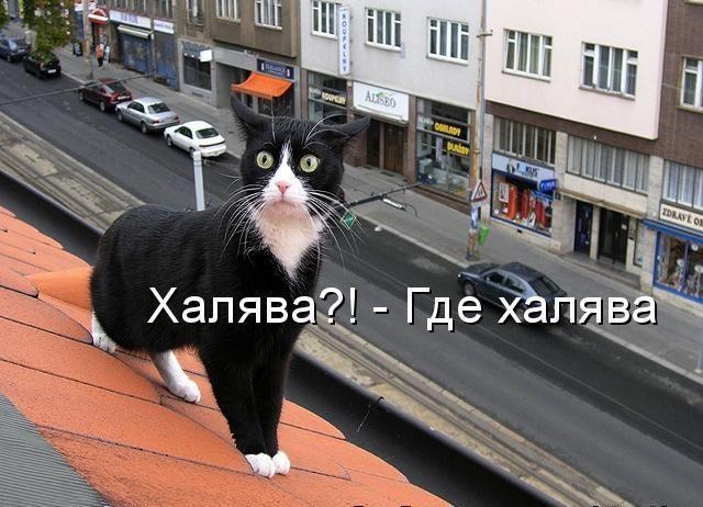 """Как """"купить"""" ноутбук бесплатно в Тернополе?"""