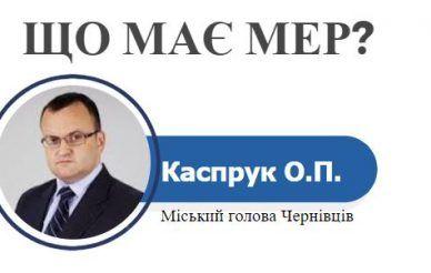 Олексій Каспрук: декларація 2016 та тендер пов'язаний з дружиною [Інфографіка]
