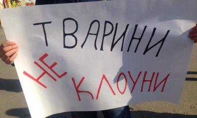 Акція «За цирк без тварин» в Івано-Франківську
