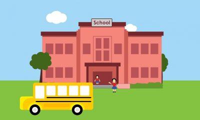 14 мільйонів було виділено на придбання нових шкільних автобусів на Закарпатті