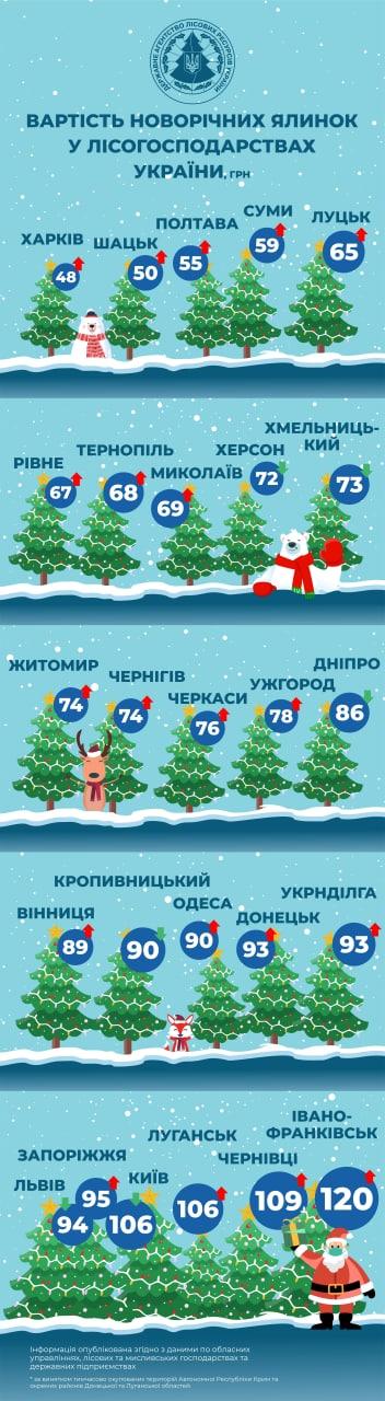 Яка ціна ялинки в Рівному, Луцьку та інших обласних центрах Західної України